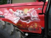 Lehmät kesälaitumella